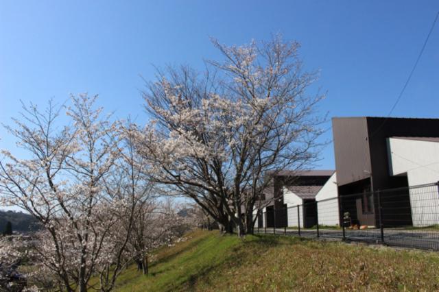 社会福祉法人島根県社会福祉事業団 清風園の画像・写真